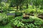 Malvar Organic Farm 06