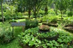 Villegas-Organic-Farm-03 (1)